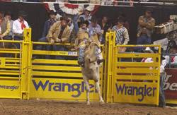 Clint Corey Pro Rodeo Hall Of Fame