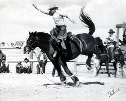Hell S Angel Pro Rodeo Hall Of Fame