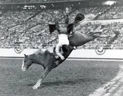 Skoal Sippin Velvet Pro Rodeo Hall Of Fame