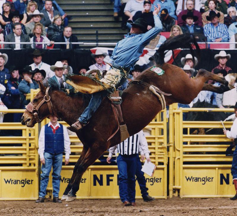 Lan Lajeunesse Pro Rodeo Hall Of Fame