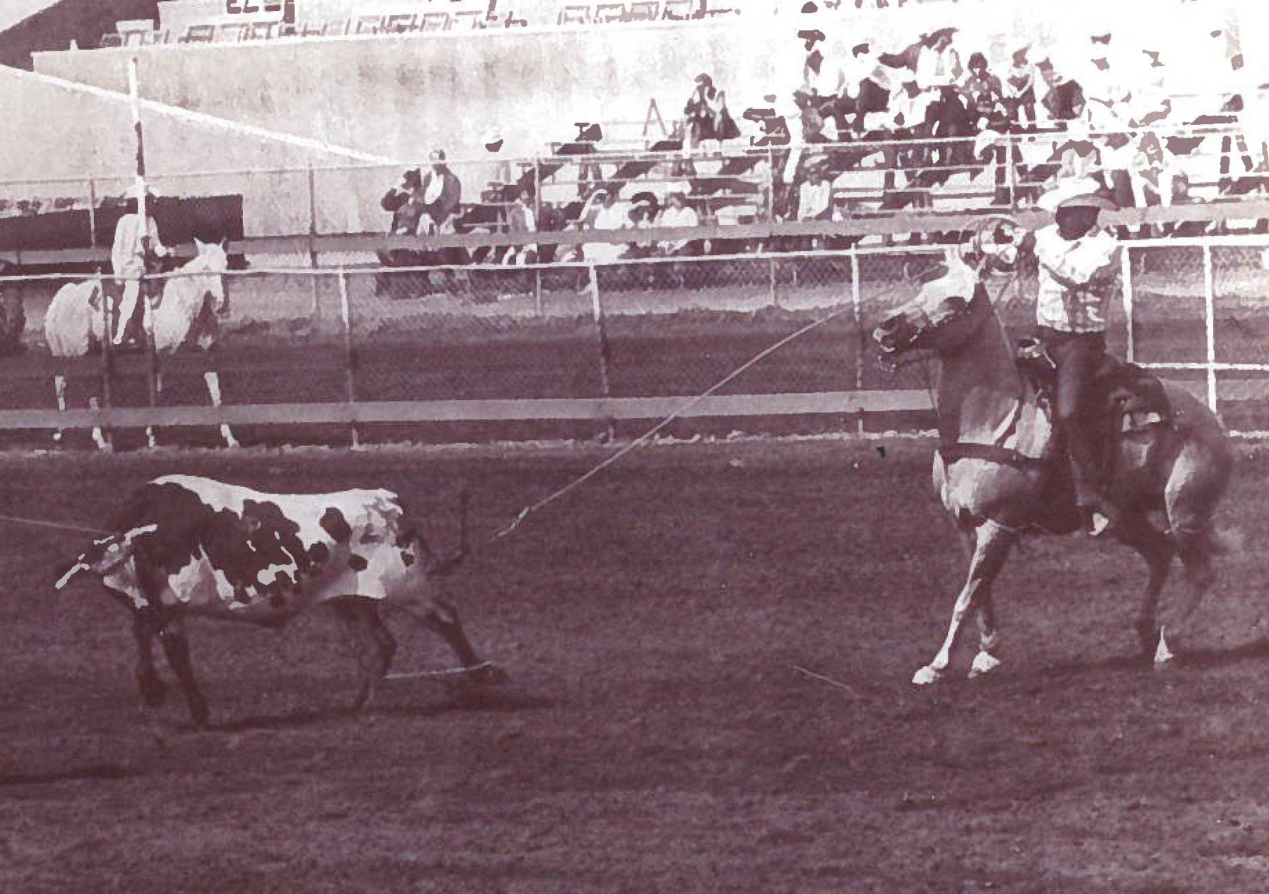 Charles Maggini Pro Rodeo Hall Of Fame