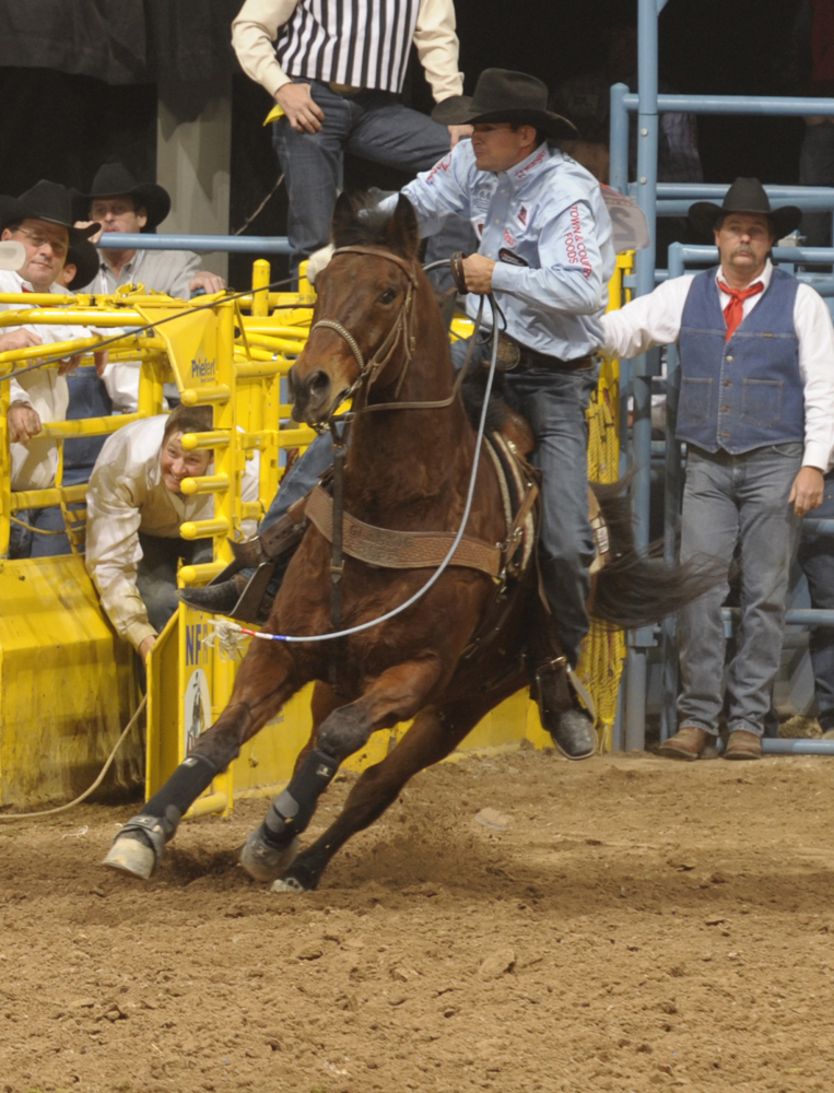 Ravis Tryans Precious Speck Best Known As Walt Is Widely Recognized One Of The Horses Ever To Carry A Team Roping Header Into An Arena